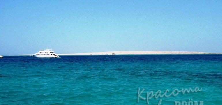 Египет. Красное море и его удивительный мир